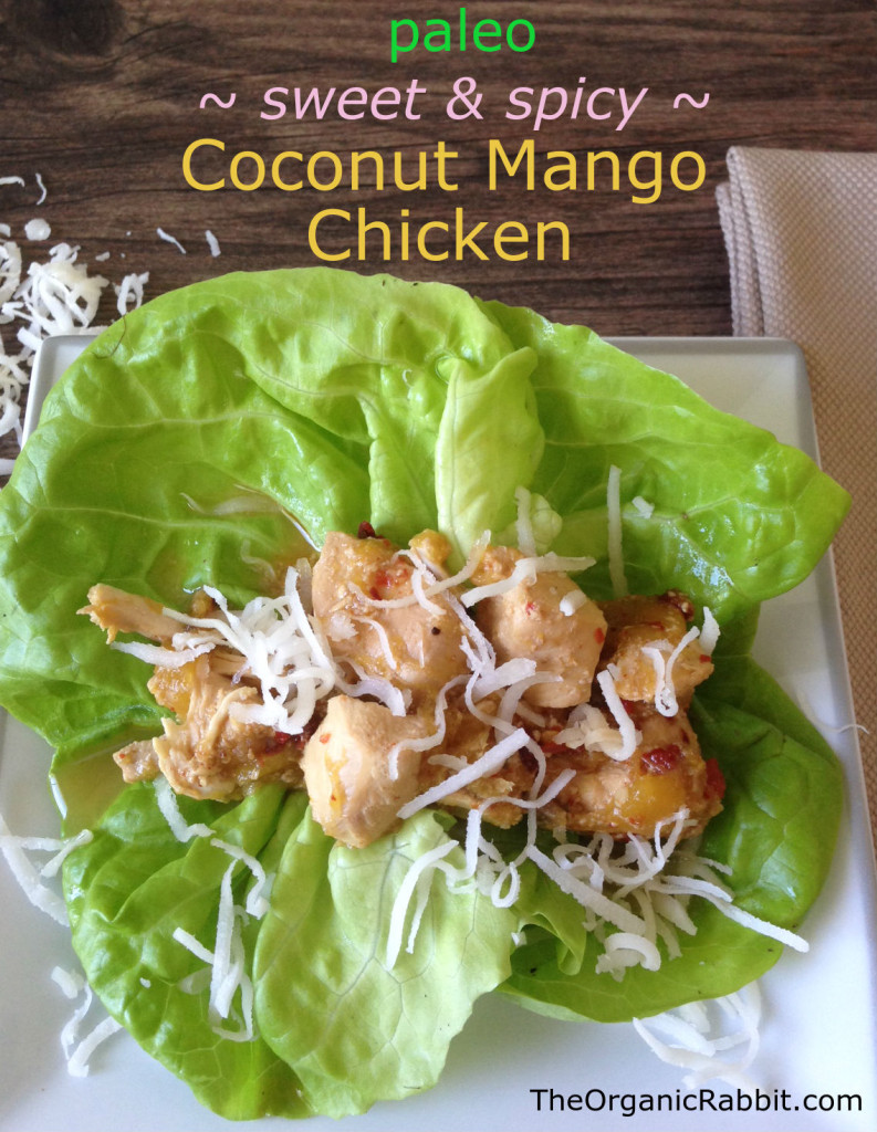 coconut mango chicken sweet spicy slow cooker protein tropical paleo